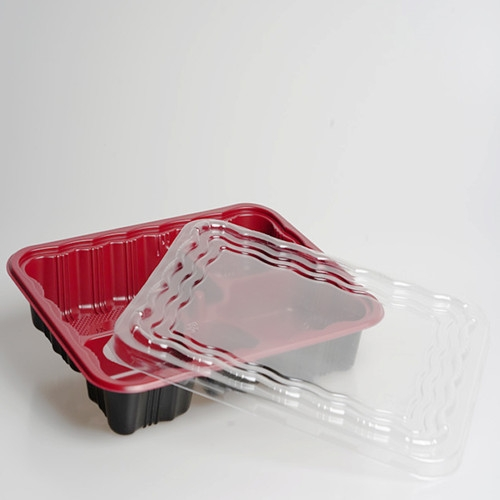 plastic disposable fast food box container