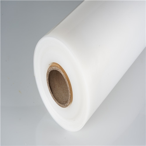Frosted Transparent Polypropylene Plastic PP Sheet Roll